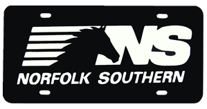 License Plate NS plastic