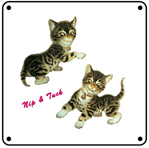 Nip & Tuck Kittens 6x6 Tin Sign